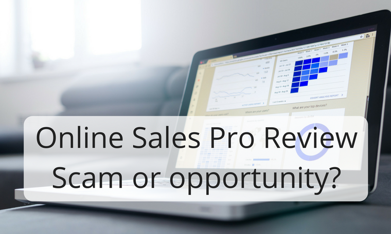 Online Sales Pro ReviewScam or opportunity-